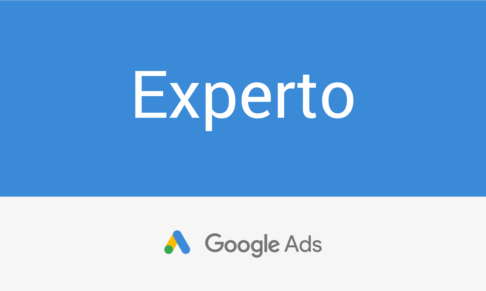 Inteligenzia - Curso Google Marketing Digital / Experto