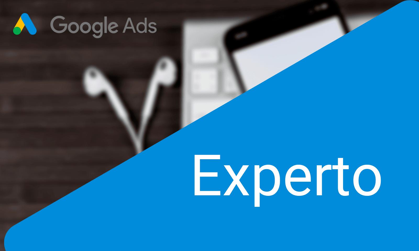 Inteligenzia - Curso Google Marketing Digital / Experto